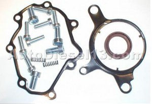 Tandem pump repair kit