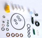 CR DELPHI pump repair kit