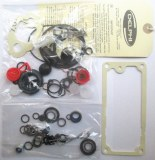 CAV DPS pump repair kit